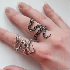 Unique Skeleton Snake Ring Set, Black & Silver
